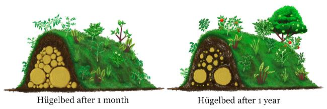 Hügelbedden & Hügelkultur
