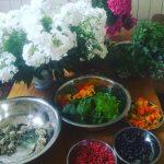 The #harvest of today…#flowers #berries #seeds ! #amazing #urbanfarming #agroforestry #demotuinnoord #urbaniahoeve #blessed